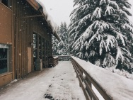 Snowy Mountain Getaway near Greenwater, WA