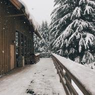 Snowy Mountain Getaway near Greenwater, WA